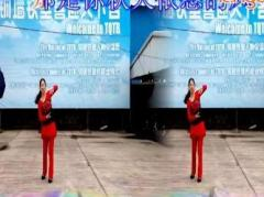 瑶瑶姐妹广场舞 又见山里红 编舞春英 习舞制作冰雨