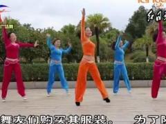 杨丽萍广场舞 动感有氧健身操组合一