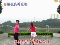 周周广场舞 桃花运 双人对跳恰恰舞 改编:周周
