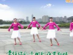 江南雨广场舞 烟花三月下扬州 原创 16步 附分解
