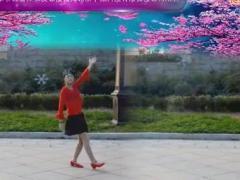 淓淓广场舞《山里红》Baofeng