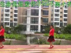 凤之韵广场舞《小苹果》