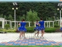 蝶依广场舞 双人对跳