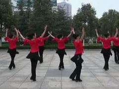 阿中中广场舞《梦中的楼兰姑娘》合作演教版