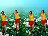 凤凰香香广场舞《把心交出来》 原创正面
