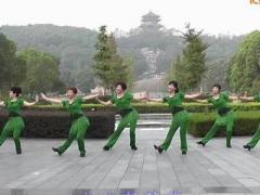 动动广场舞 《草原一枝花》 含动动教学