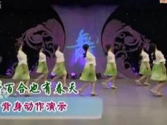 応子广场舞 《野百合也有春天》 背面动作示范