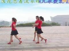 江南雨广场舞 唐伯虎点秋香 改编18步双人舞 圈圈舞