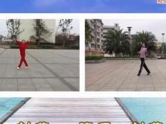 刘荣广场舞 廖弟演示合作版 《又见山里红 》附分解、背面示范 原创