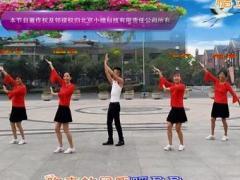 淓淓广场舞 山里红 大众健身舞