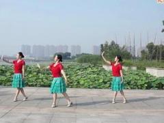 应子广场舞 《我在纳林湖等着你》 含背面分解教学