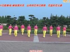 中油四季广场舞 dj红歌串烧 解放军的天 附教学