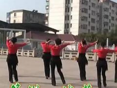 高安子君广场舞 《玫瑰花开》