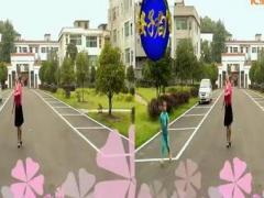 高安子君广场舞 草原上的月光 演示:芳草