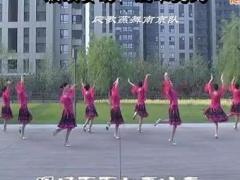 応子广场舞 一周年视频回顾及花絮