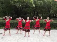 応子广场舞 《娜鲁湾情歌》 含背面分解