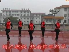 高安子君广场舞《情歌唱到老》