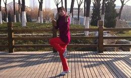 林大静广场舞有氧健身操《飞向更远方》
