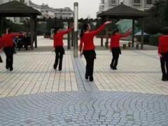 盛泽雨夜广场舞 《踏浪》 健身舞