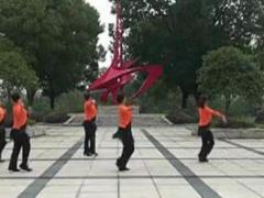 阿中中广场舞《好心情》合作演教版