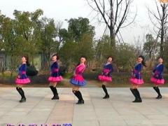动动广场舞 《雪山姑娘》 含动动背面分解教学