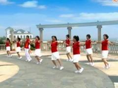阿中中广场舞 甜蜜的相聚 变花样对跳