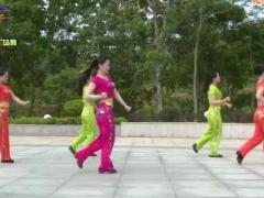 杨丽萍广场舞 《我就是大哥》 含背面口令分解教学