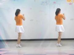 太湖彬彬广场舞 想着你的好DJ 步子舞32步 正反面演示及教学
