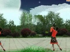 春英广场舞 醉月亮 背面演示与分解