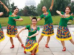 云裳广场舞 《我的故乡巴彦淖尔》 含背面动作分解教学