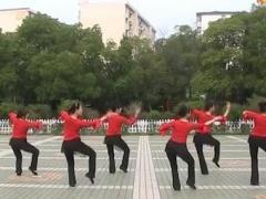 高安子君广场舞《油菜花开》含分解动作