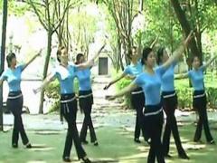 高安子君广场舞 《拉萨月色美》