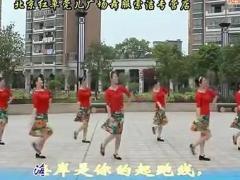 高安子君广场舞《水兵梦里海蓝蓝》附动作分解