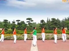 舞动旋律2007健身队 突然的自我 步子舞