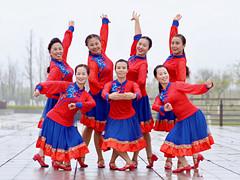 応子广场舞 《岩缝里盛开的花》 含背面分解教学 临川碧水蓝天舞队