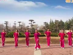 舞动旋律2007 《十分钟》 爵士舞风格 含背面动作分解教学