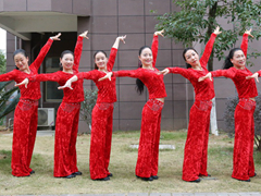 杨丽萍广场舞 《开门红》 含背面动作分解教学 原创新年舞
