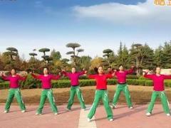 舞动旋律2007 《练舞功》 含背面动作分解教学