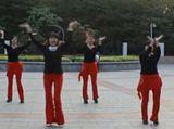 凤凰香香广场舞 《我说亲爱的》 正反面