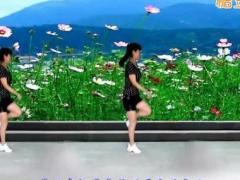 太湖一莲广场舞 《歌在飞》 滑步舞 含背面动作分解教学