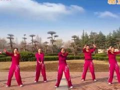 舞动旋律2007健身队《换掉》含背面动作分解教学