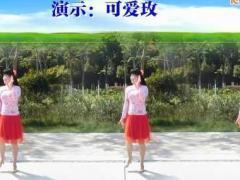 可爱玫瑰花广场舞恋曲1990 DJ 个人演示 编舞可爱玫瑰花