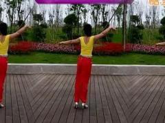 神彩广场舞《零度桑巴》