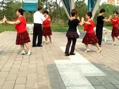 红尘蝶舞广场舞 粉红色的回忆 双人舞