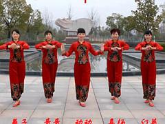 动动广场舞 《开门红》 含背面动作分解教学