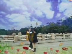 神彩广场舞 很任性 吉特巴、水兵舞