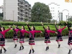 沅陵燕子亚虎娱乐,亚虎娱乐app,亚虎777娱乐老虎机 《相约拉萨》 藏族舞 含背面动作分解教学