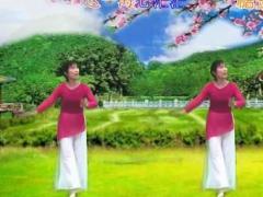 新丽莉舞蹈 凉凉 古典舞 编舞桃子