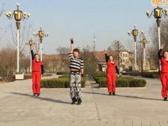 玉全广场舞 有氧健身操 含背面动作分解教学