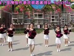 阜宁舞梦缘广场舞 《向前冲》 改编 君子兰